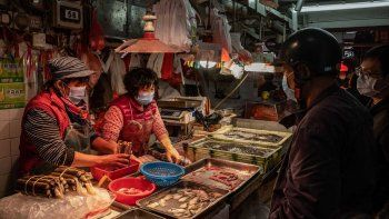 china insiste: el covid entro a wuhan por mariscos de otro pais