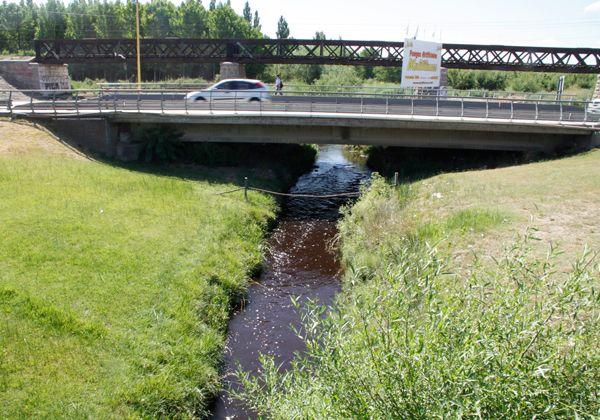 La Justicia multará a papelera por contaminar el Canal de los Milicos