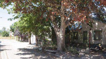 conflicto vecinal en el cgt por un arbol que destruyo una vereda
