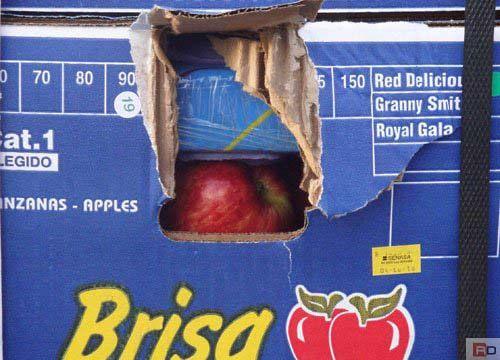 Mañana comienza el juicio por el contrabando de cocaína Manzanas blancas