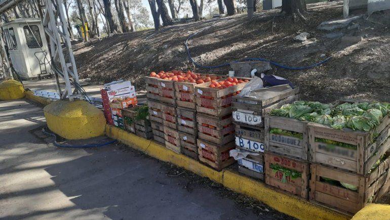 Detectan irregularidades en el transporte de más de 2 mil kilos de frutas y hortalizas