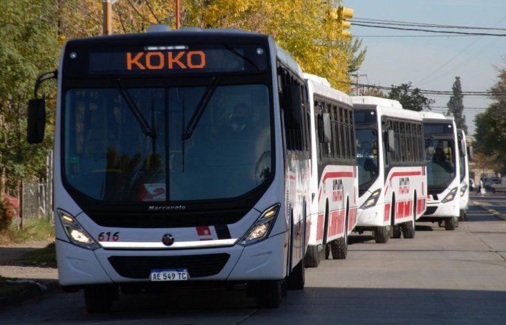 KoKo renueva su flota con colectivos ecológicos e inclusivos