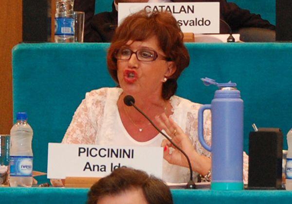 Piccinini solicitó información al Secretario de Energía de la Provincia
