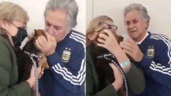 Conmovedor video: el reencuentro de Fillol con su perrito, tras zafar del Covid