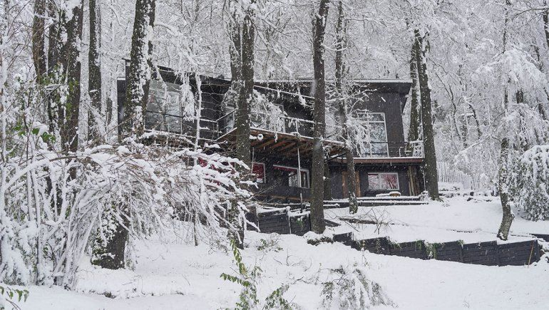 Una enorme rama cayó por la nieve sobre dos niños: uno murió