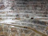IMAGEN DE ARCHIVO. Camiones trasladando minerales en la mina de oro Veladero de Barrick Gold Corp en la provincia de San Juan, Argentina. Abril 26, 2017. REUTERS/Marcos Brindicci
