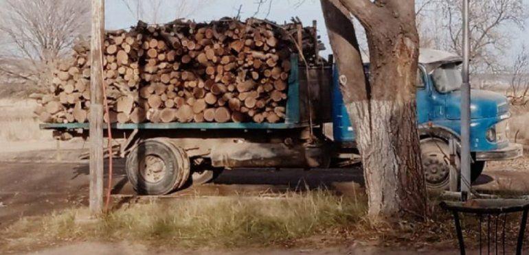 Decomisaron 5000 kilos de leña y armas de fuego.