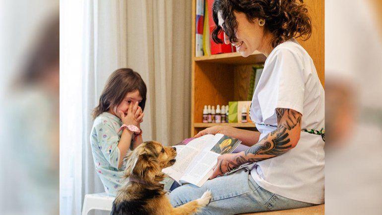 La terapia de flores para cuidar a los animales de la pirotecnia
