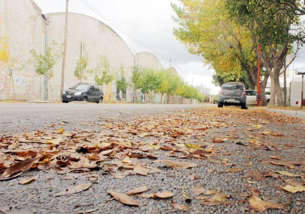 Intensificarán el barrido de hojas y la reparación de calles de ripio