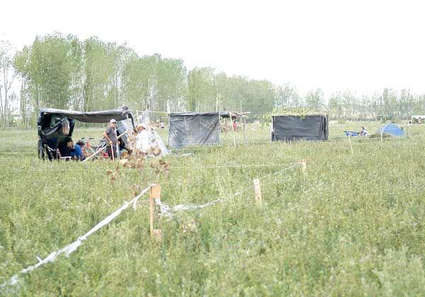 Familias ahora ocupan tierras en producción