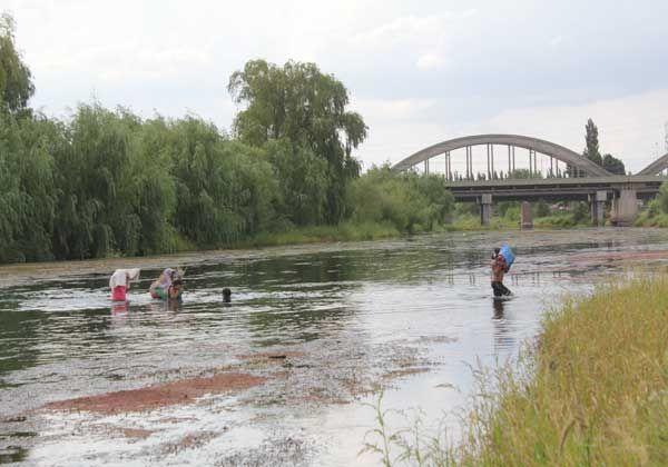 Problemas por bajo caudal del río