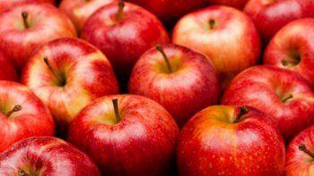 acuerdo de precios entre la nacion, rio negro y productores de manzanas