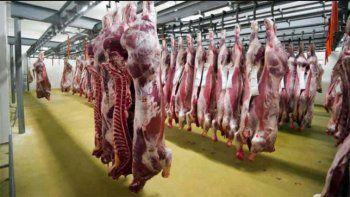 Nación reabrirá la exportación de carne la semana próxima