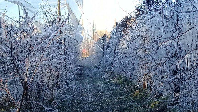 ¡Qué frío!: hasta 8.5 grados bajo cero