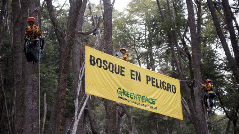 Greenpeace no quiere saber nada con el proyecto inmobiliario Ladera.