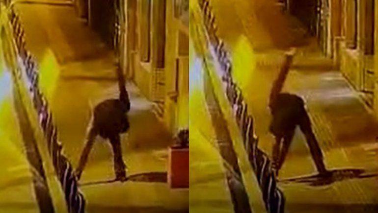 Un delincuente precalentó antes de cometer un robo y quedó grabado