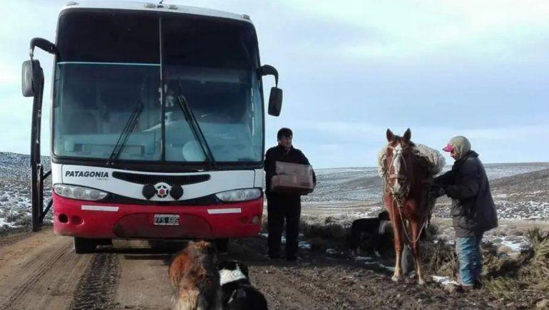 Vuelven los colectivos para viajar a Bariloche y la Línea Sur