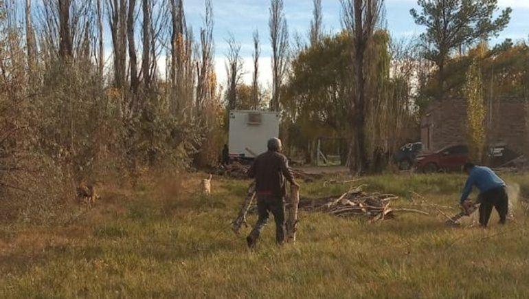 Vecinos de las tomas talan árboles para calefaccionarse