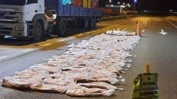 decomisaron mas de 1400 kilos de carne ilegal y en mal estado