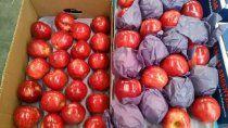el precio de la manzana crece 15 veces, desde la chacra a la gondola