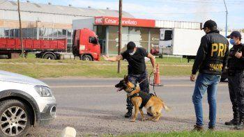 condenaron a la banda narco que descubrio el perro maximo