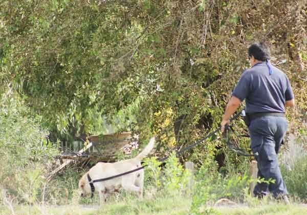 Liberaron a los dos demorados por el asesinato del vecino Benjamín Moyano