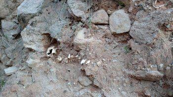 hallaron el cadaver de un nino en las bardas de la isla jordan