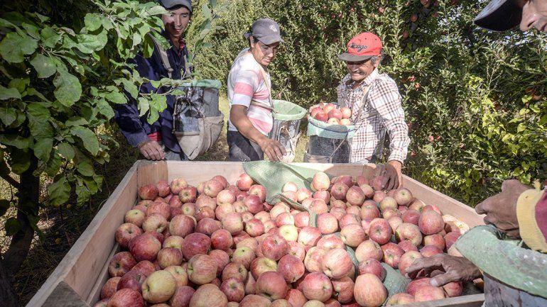 Aval político a los fruticultores para pagar menos impuestos