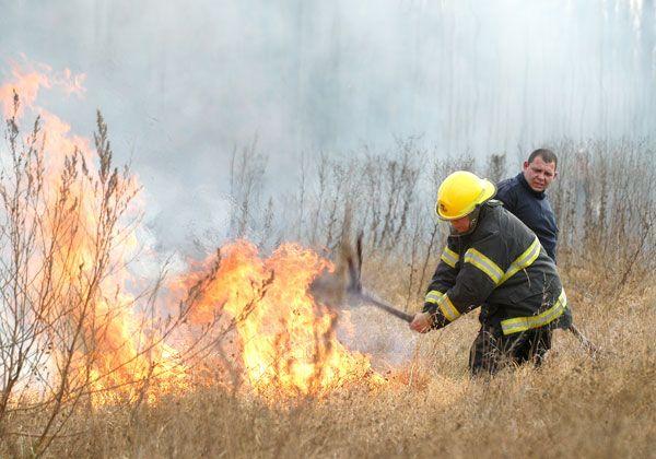 Los bomberos cipoleños celebraron su día