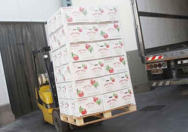 Destraban el ingreso de manzanas a Brasil