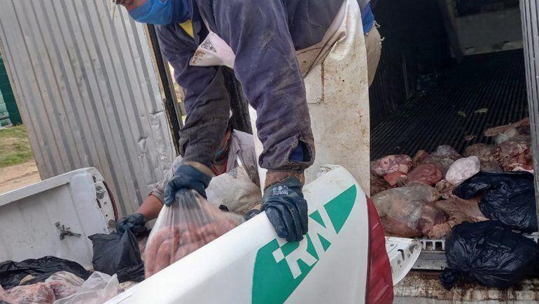 Decomisaron 1,5 toneladas de carne podrida que estaba a la venta