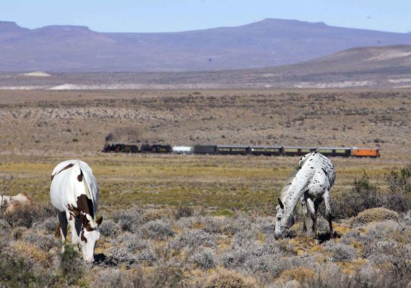 """Río Negro y Chubut estrechan lazos con """"La Trochita"""" como denominador común"""