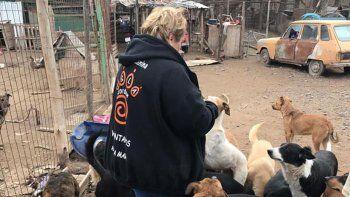 Las voluntarias de la Isla Jordán quieren avanzar en su plan de adopciones y en un futuro cerrar el refugio animal.