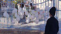 una seno murio por covid-19 y el colegio le brindo un homenaje