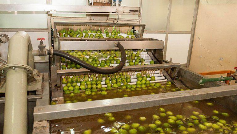 Buscan extender la ley de emergencia económica en la fruta