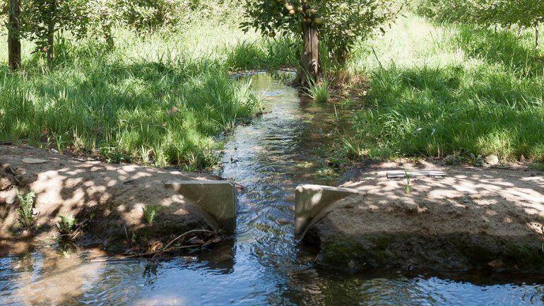 El riego ya está dando su aporte a la actividad frutícola. Además de ser vital para el sustento de los vegetales