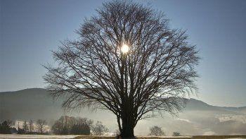 solsticio de invierno: cambio de estacion y limpieza espiritual