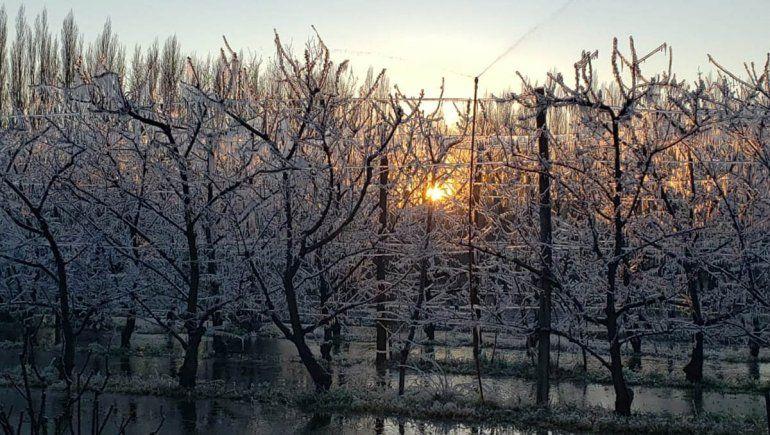 Mañana helada en todo el Alto Valle
