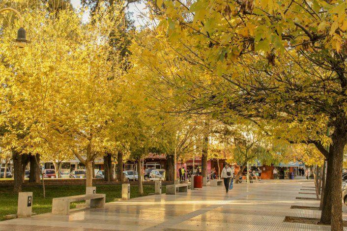 El otoño fue más cálido de lo normal y con menos lluvias