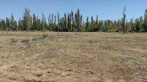 En la zona norte, hay muchas tierras que ya no son productivas y que podrían ser loteadas, si el Municipio accediera a autorizarlo.