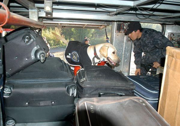 Procedimiento policial en Ruta 22
