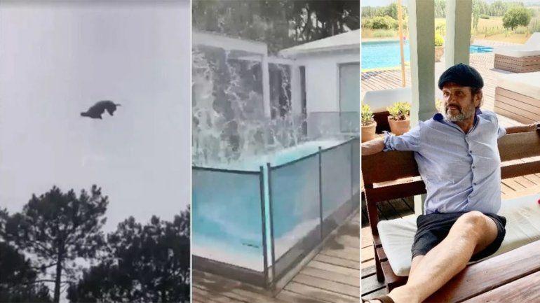 Toda la verdad detrás del indignante video del animal arrojado desde el helicóptero
