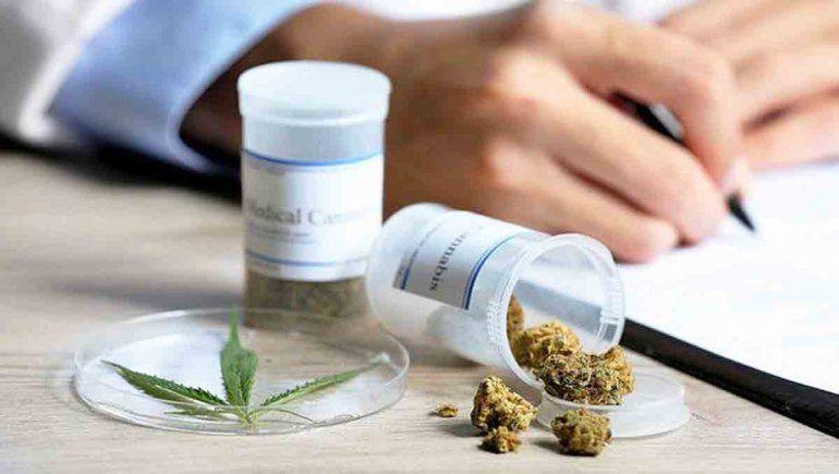 Las dudas que genera la letra chica del cannabis medicinal