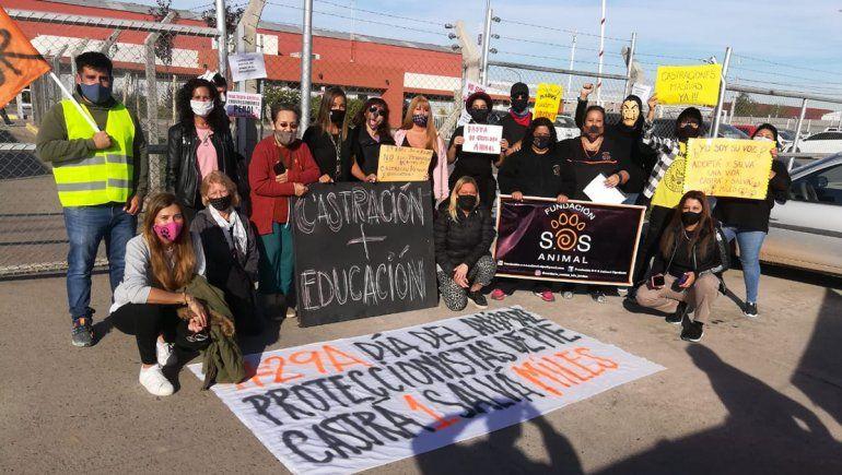 Proteccionistas se movilizaron frente a las oficinas de Servicios Públicos