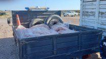 lo atraparon transportando 2 mil kilos de carne ilegal