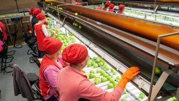 Pymes y grandes usuarios, como los frigoríficos, sufren el aumento.
