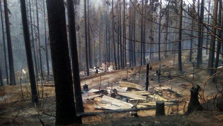 Piden reformar el Código Penal para condenar a los autores de los incendios