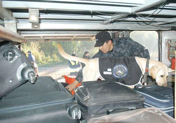 Policía y Tránsito controlan accesos a la ciudad