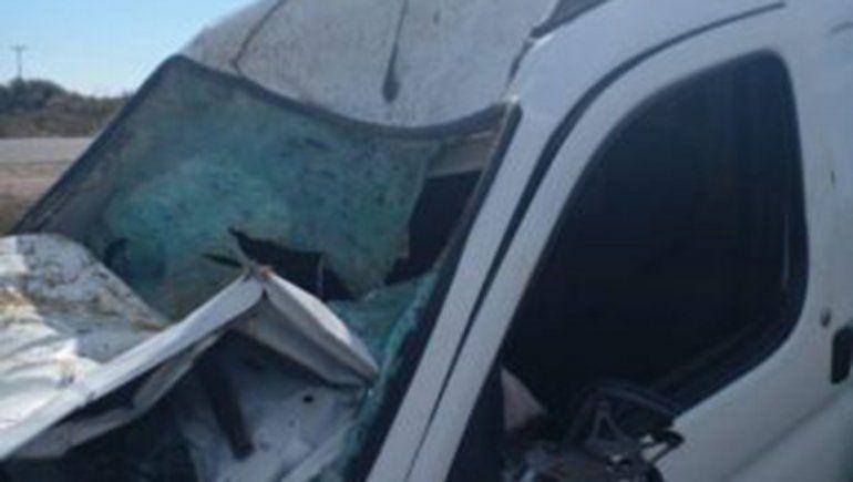 Una vaca provocó un terrible accidente de tránsito cerca de Catriel