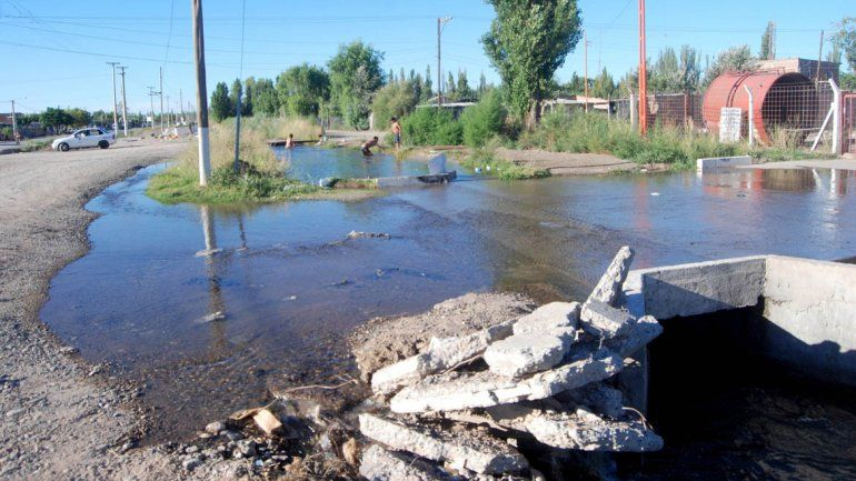Alarmante estado de los canales de riego en Cipolletti